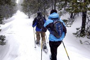 Couple snowshoeing in door count