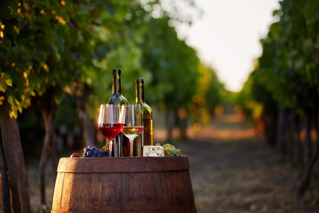 winery on wine trail in vineyard