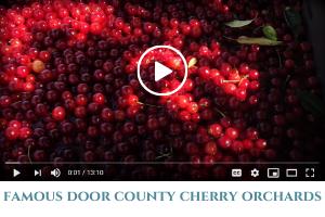 cherry video